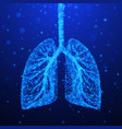 human lungs respiratory system vector image