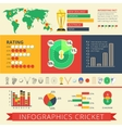 Infographics report cricket poster vector image vector image