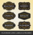 Set of flourish calligraphy frames and labels vector image
