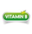 Vitamin B label vector image vector image
