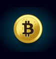 crypto currency golden coin of bitcoin vector image vector image