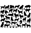 dogs silhouette collage vector image vector image