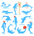 dolphin seafish character drawing or vector image vector image