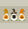 halloween gnomes with pumpkin jack o lantern pot vector image