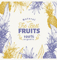 pineapple fruit design template hand drawn vector image