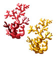 set of red and golden corals isolated on white vector image
