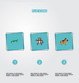 set of zoo icons flat style symbols with gecko vector image
