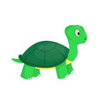 turtle animal ocean green nature wildlife sea vector image vector image