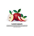 apple fruit on white background healthy lifestyle vector image