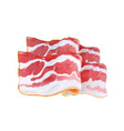bacon stripe realistic icon 3d vector image vector image