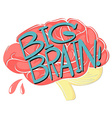 Big brain with text vector image vector image