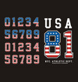 number texture flag american vector image vector image