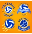 Set of volleyball labels logo templates etc with