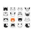 collection of cat icons vector image
