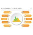 health benefits hemp seeds horizontal business vector image vector image