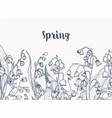monochrome horizontal backdrop with lily of the vector image vector image