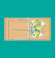 wooden mouse trap with money vector image vector image