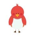 bird cartoon icon image vector image