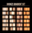 bronze metal realistic gradient collection of vector image vector image