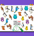 find two identical bird pictures game for kids vector image vector image