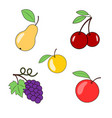 fruits and berries on a transparent background vector image vector image