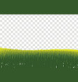 green grass border isolated on transparent vector image