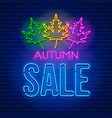 neon sign autumn sale vector image vector image