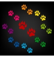 Animal Tracks icon vector image vector image