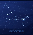 constellation bootes herdsman night star sky vector image vector image