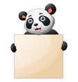 cute a panda holding blank sign with both hands vector image vector image