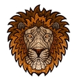 Ethnic patterned ornate head of Lion vector image vector image