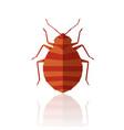 flat geometric bedbug vector image vector image