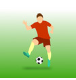 freestyle football soccer player vector image