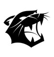 graphic head tiger vector image