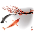 Koi carps and sacura branch vector image vector image