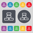 Network icon sign A set of 12 colored buttons Flat vector image