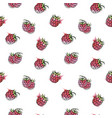 raspberry berry beautiful seamless pattern vector image vector image