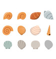 set of shell in flat style top view vector image vector image