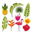tropical flower design vector image vector image