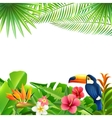 Tropical Landscape Background vector image vector image