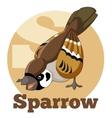 ABC Cartoon Sparrow vector image vector image