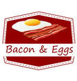 Bacon and eggs vector image