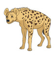 color with african spotted hyena vector image vector image