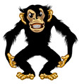 furious cartoon chimpanzee vector image vector image