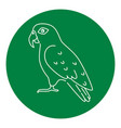pionus parrot icon in thin line style vector image vector image