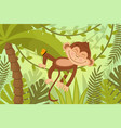 scene monkey sleeps on vine vector image