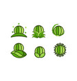 world globe and leaf save art symbol designs vector image