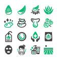 aloe vera icon vector image vector image
