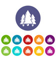 fir tree icons set color vector image vector image