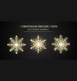 golden snowflake set new year and christmas vector image vector image